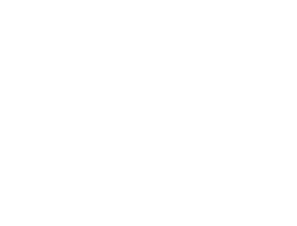 ECI_Logo White